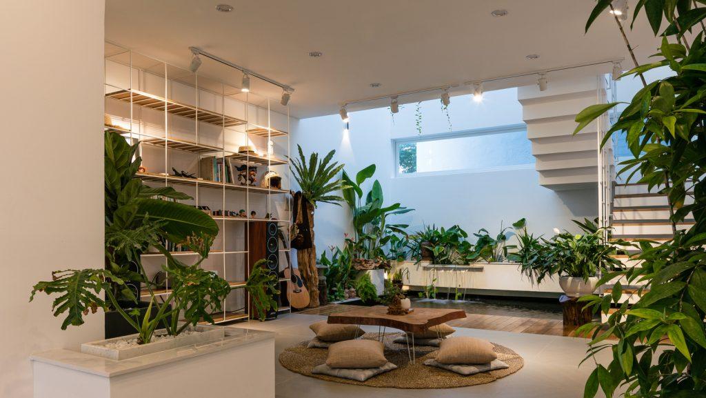 Interior de una casa. Mesa baja con almohadones en el piso. Muchas macetas con distintas plantas. Biofilia.